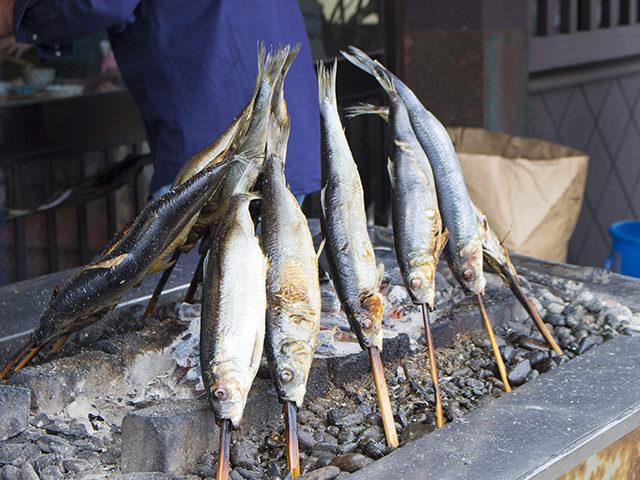 ニシンやウニ丼のメニューが人気の小樽・青塚食堂で海鮮丼をいただきました!