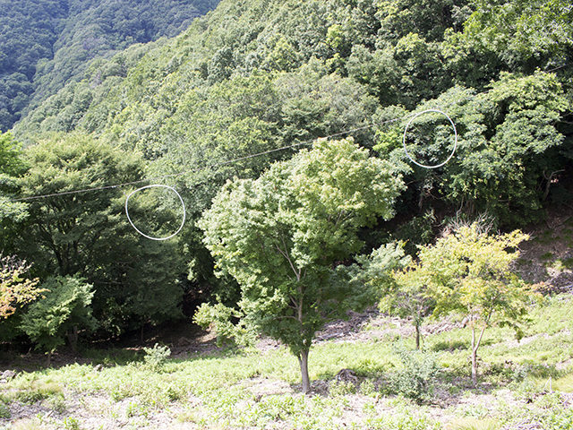 能勢町観光には能勢妙見・里山ぐるっとパス!妙見山の足湯も無料に!